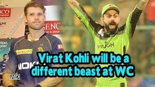 IPL 2019 | Virat Kohli will be a different beast at WC: Lockie - IANSINDIA