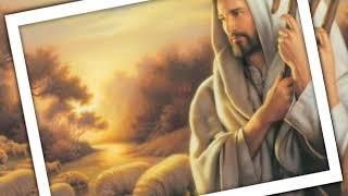 Video Chúa chăn nuôi tôi ( Phan Đinh Tùng ) - Phan Đình Tùng