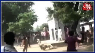 लखीमपुर में 'Toilet-एक जंग कथा'! शौचालय पर समर, टूटा जबड़ा, टूटी कमर! - AAJTAKTV