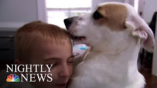 How One Boy Has Helped Save Over A Thousand Shelter Dogs | NBC Nightly News - NBCNEWS