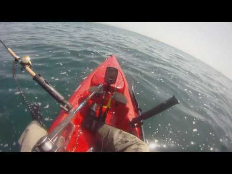 DP Kayak Fishing