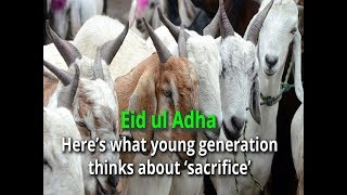 Eid ul Adha: Here's what young generation thinks about 'sacrifice' - TIMESOFINDIACHANNEL