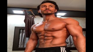 In Graphics: Ahead of 'Baaghi 2' release, makers announce 'Baaghi 3' - ABPNEWSTV
