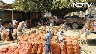 फ़र्रूख़ाबाद लोकसभा सीट पर कांटे की टक्कर, आलू बना बड़ा मुद्दा - NDTVINDIA