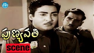 Punyavathi Movie Scenes - NTR At Pandari Bai's House | Sobhan Babu | Krishna Kumari | S V Ranga Rao - IDREAMMOVIES