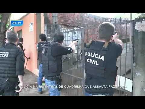 Quadrilha que assaltava fazendas em Londrina é alvo de operação da Polícia Civil
