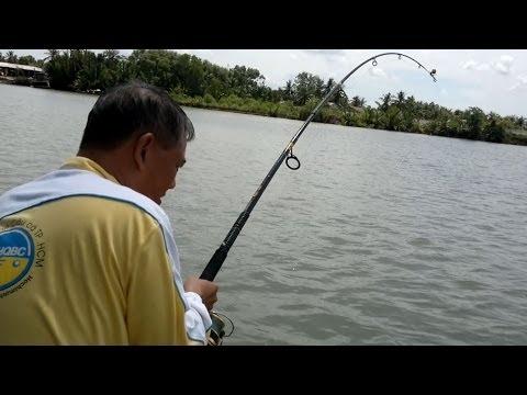 Câu Cá Bông Lau Sông Cổ Chiên của Cường5x và Cháu Nhựt cùng Cháu Minh ngày 29-05-2014
