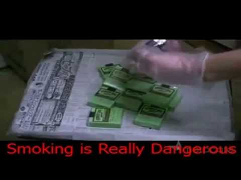 [Bahaya Merokok] Why is Smoking Dangerous ?