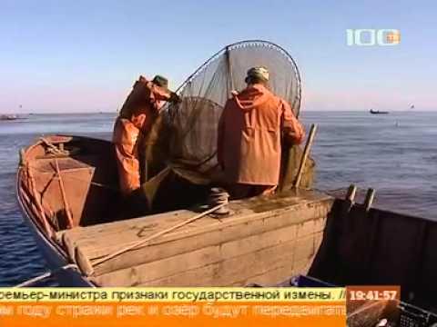ловля корюшки с лодки весной