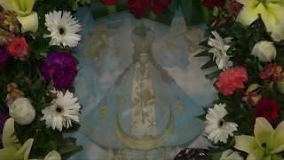 Fiestas patronales en Jerez de García Salinas (Jerez, Zacatecas)