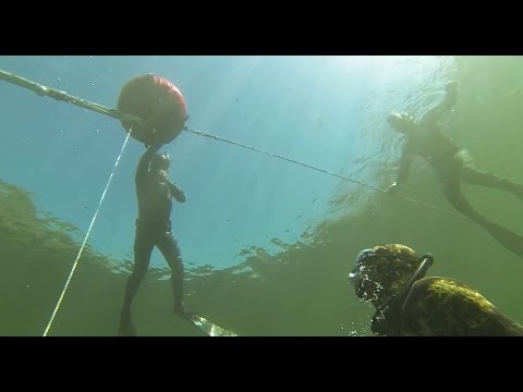 Abyss Freediving Open Water