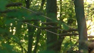 Woman dies from zip line fall - CNN