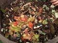 Compostaje: abono natural hecho de la basura orgánica del hogar
