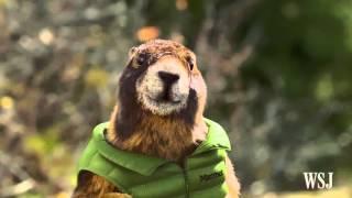 Super Bowl 50: Marmot Ad - WSJDIGITALNETWORK