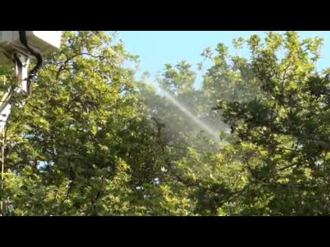ΡΑΝΤΙΣΜΑ ΣΤΑ ΠΛΑΤΑΝΙΑ ΤΗΣ ΚΑΡΥΑΣ 29 4 2012