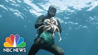 South Korea's Amazing 'Mermaids' Keep Alive A Centuries-Old Tradition   NBC News - NBCNEWS