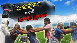 Barre Penda  | A Village Oriented Fun Short Film - YOUTUBE