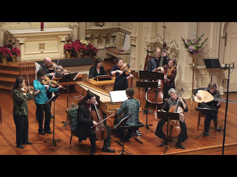 Vivaldi: Concerto for Two Cellos in G Minor RV 531, Allegro