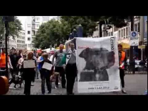 Global Anti BSL Protest: Cologne Chapter - 13th July 2013