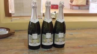 T02E25: Vinho Luiz Porto importa técnica francesa para fabricar vinhos finos