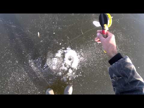 окунь 53 камера для рыбалки купить