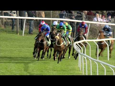 2014 Stan James Champion Hurdle - Jezki - Racing UK
