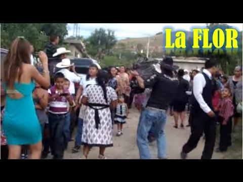 el tradicional baile de la Flor o el Guajolote, San Jose Chepetlan, Oaxaca