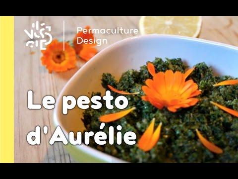 Rubrique Permaculture Humaine, recette : Le pesto d'Aurélie