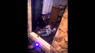 Medo extremo de cachorro de brinquedo view on youtube.com tube online.