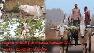 Heart Touching Story Of Indian Farmer 'Karshaka' Short Film | Top Telugu Tv - YOUTUBE