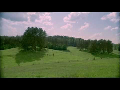 Move Your Imagination (English) - Mazury