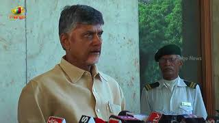 Andhra Pradesh is considerably improving in agriculture sector CM Naidu | Mango News - MANGONEWS