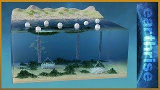 🌏 Farming underwater: 3D solutions for land and sea   Earthrise - ALJAZEERAENGLISH
