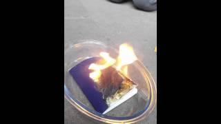 بالفيديو.. يهودية تحرق جواز سفرها الإسرائيلي تضامنا مع غزة