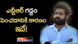Reason Behind Ntr New Look || ఎన్టీఆర్ గడ్డం పెంచడం కారణం ఇదే! || Top Telugu Media