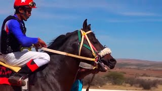 Carreras de caballos en El Centro (Fresnillo, Zacatecas)