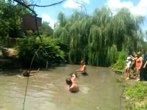 видео толстолобик прыгает в лодку
