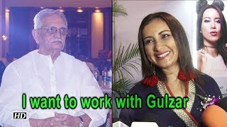 I want to be directed by Gulzar: Divya Dutta - IANSINDIA