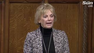 "Soubry: ""nothing's changed"" after historic deal vote - THESUNNEWSPAPER"