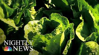 Don't Eat Romaine Lettuce, CDC Cautions After E. Coli Outbreak | NBC Nightly News - NBCNEWS