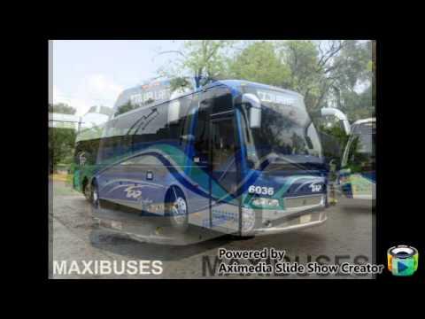 autobuses de mexico lujo