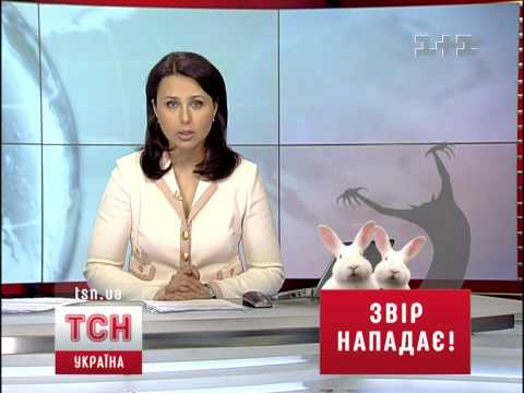 Chupakabra. Ukraina TV 1+1 news. 18.03.2010