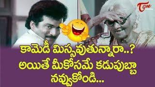 Rajendra Prasad Comedy Scenes | Telugu Comedy Videos | NavvulaTV - NAVVULATV