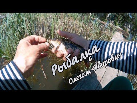 как сделать кивка на рыбалку видео
