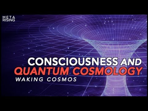 Waking Cosmos | Consciousness Documentary | The Self-Excited Circuit [Episode one]