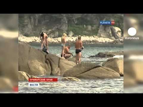 Ataques de tubarão mancham as férias na Rússia