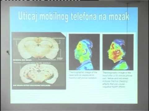 Dr Sladjana Velkov - predavanje Povratite Zdravlje i Dugovecnost