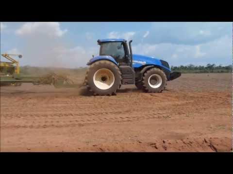 Plantio soja 2012/2013
