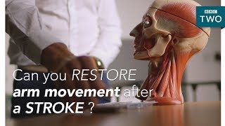 Can we restore arm movement after a stroke?  - Trust Me I'm a Doctor - BBC Two - BBC