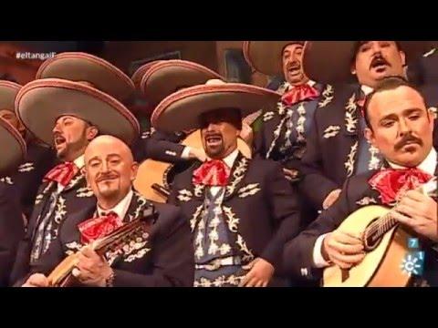 Sesión de Final, la agrupación Sigo siendo el rey actúa hoy en la modalidad de Coros.